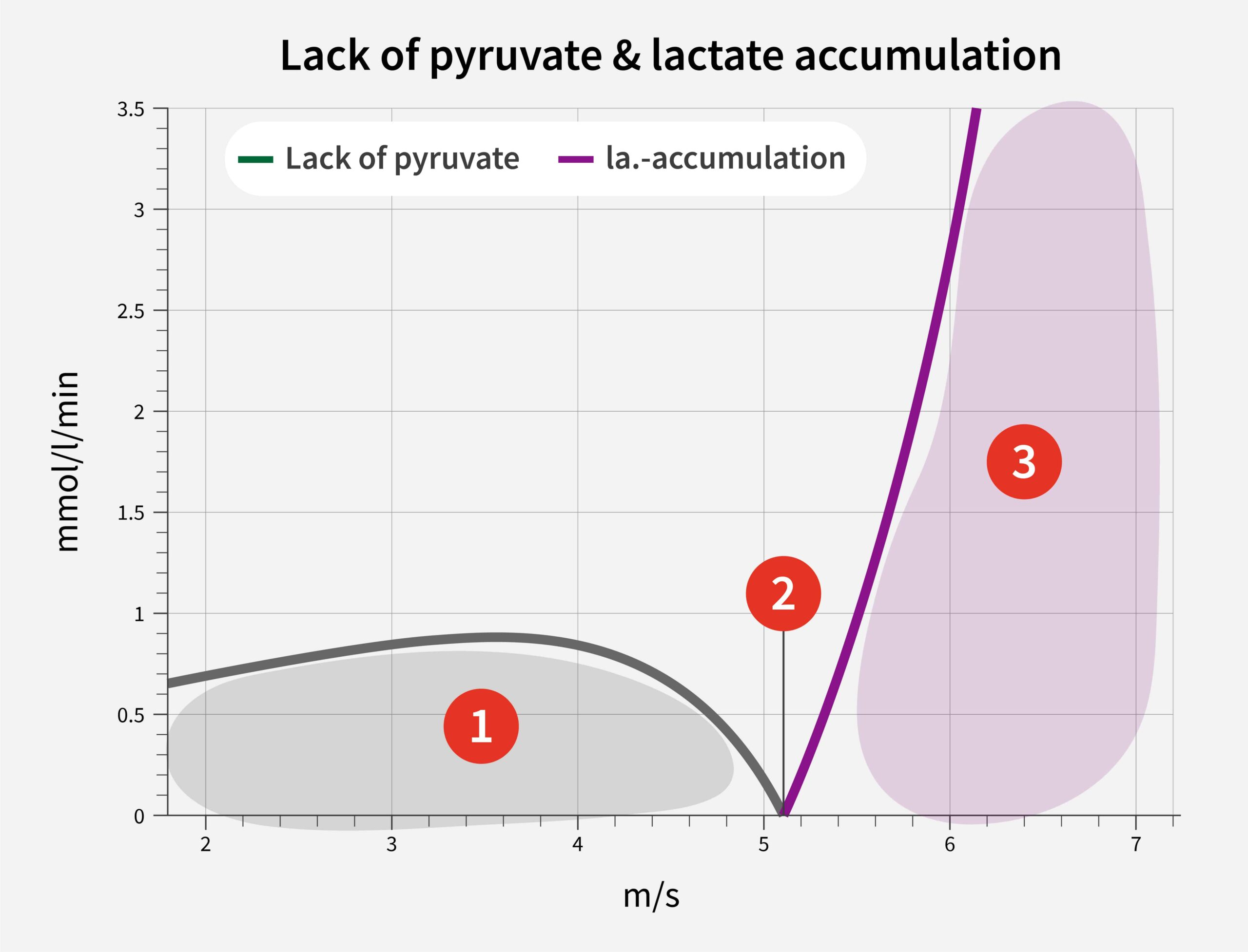 INSCYD Lactate accumulation and recovery graph
