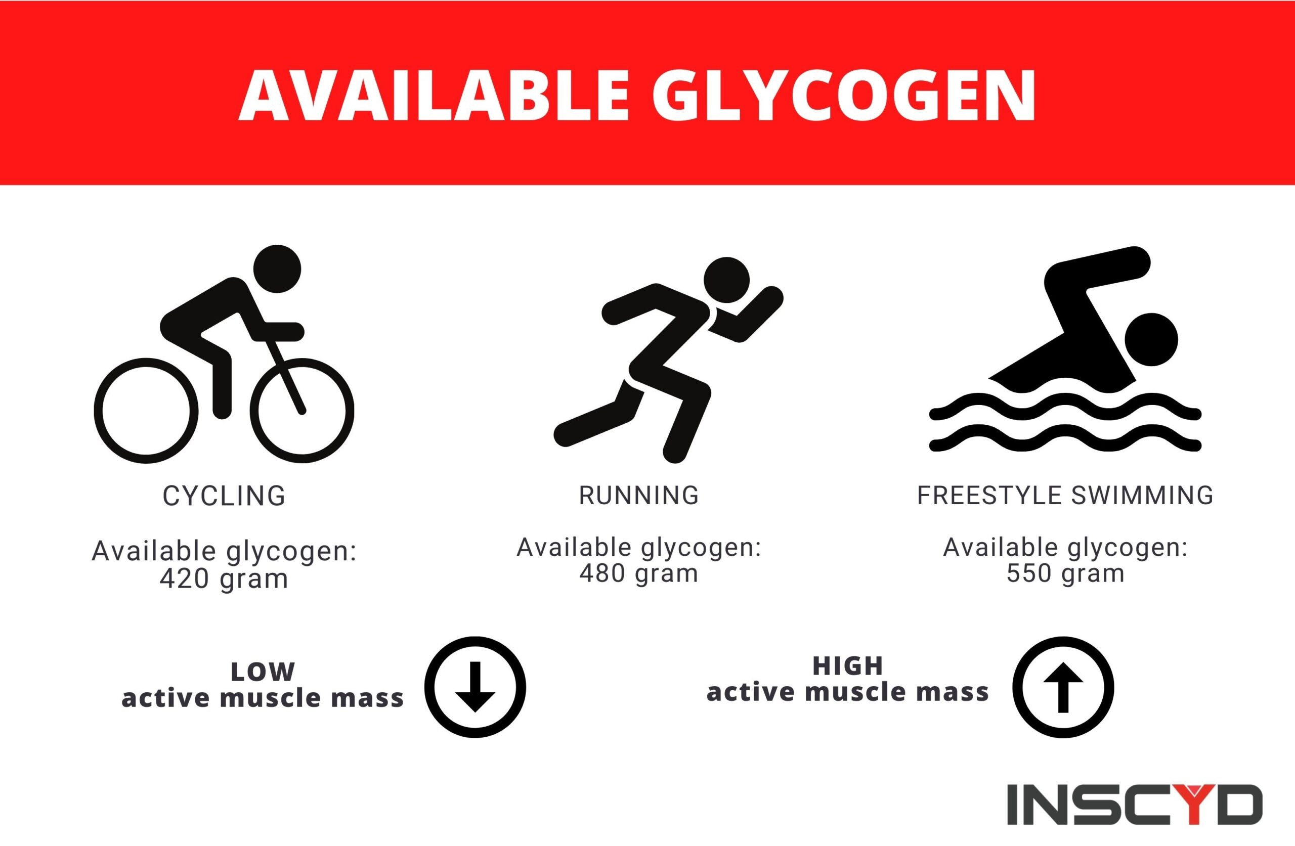 Infographic: available glycogen content when exercising.